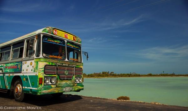Jaffna islands
