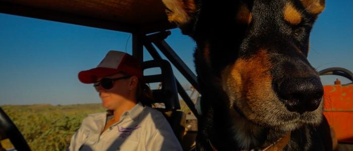 Caitlin et son chien, Warrawagine, Western Australia, Australie