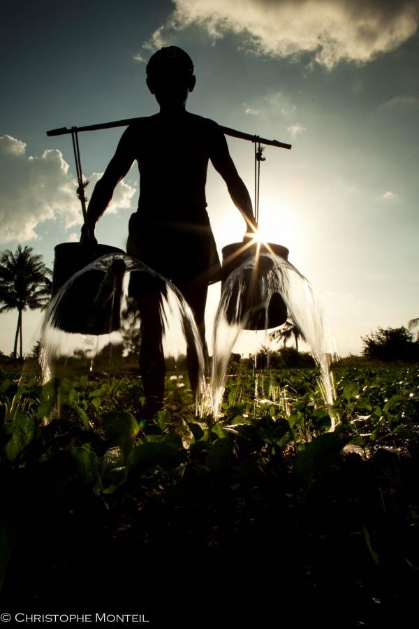 farmer, Kampot province
