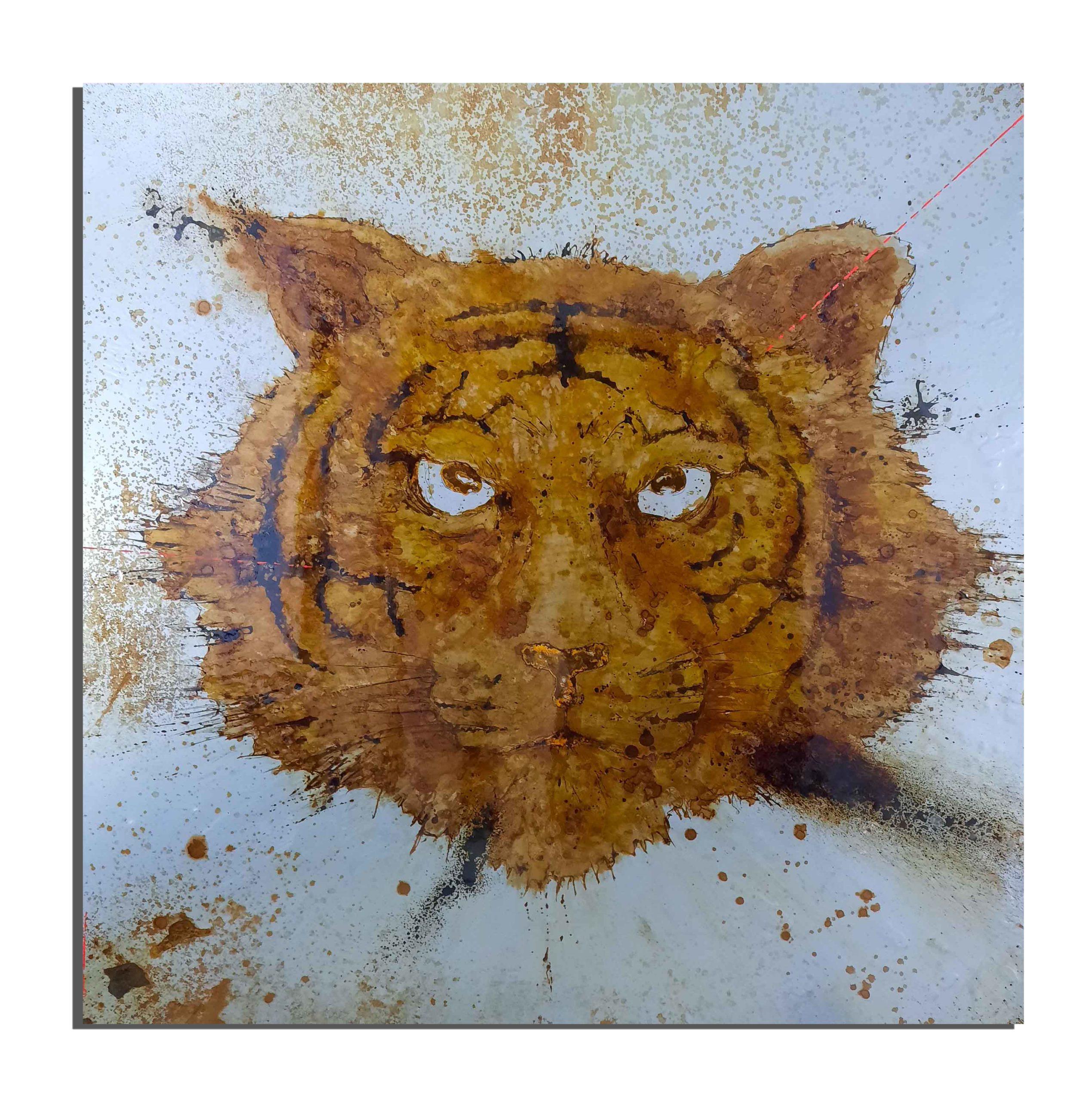 Tigre de rouille fait avec du vinaigre et de l'eau du lac sacré d'Udaïpur (Rajhastan, Inde) - projet Water Is Life, Christophe Monteil, Art 4 Nature