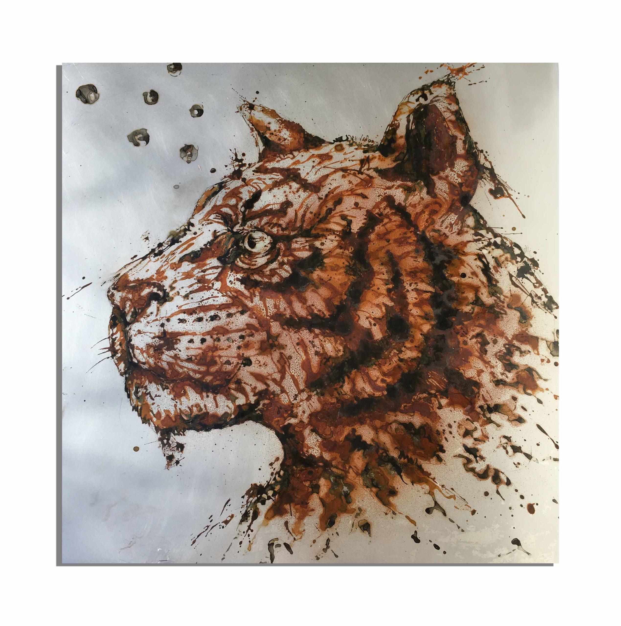 70x70 - tigre de rouille - vinaigre et eau du lac sacré d'Udaïpur (Rajhastan, Inde), projet Water Is Life, Christophe Monteil, Art 4 nature